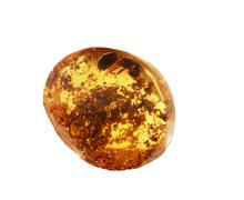 ancient amber - stock photo