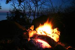 Campfire in forest Stock Photos