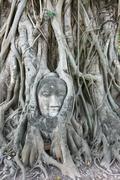 Famous face in ayutthaya, thailand Stock Photos