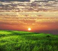 Stock Photo of green field on sunrise