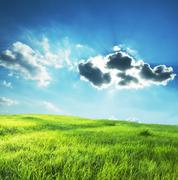 field in sunny light - stock photo