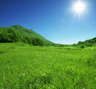summer green hills - stock photo