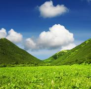 Stock Photo of summer green hills
