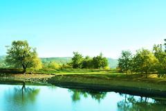 Stock Photo of mountain lake with trees
