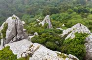 Stock Photo of rocks in moorish castle near lisbon, portugal