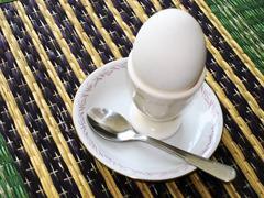 boiled egg - stock photo