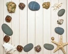 frame photos of seashells - stock photo