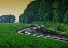 winding rural road - stock photo
