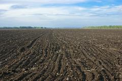 arable - stock photo