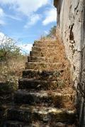 Grassed stairs Stock Photos