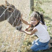 Hispanic sisters petting donkey - stock photo