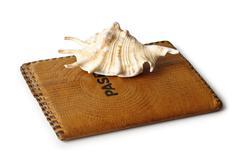 passport and seashells - stock photo