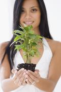 Pacific Islander woman holding plant - stock photo