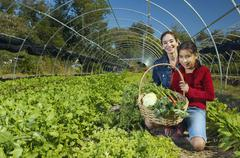 Stock Photo of Multi-ethnic mother and daughter harvesting organic produce