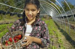 Stock Photo of Hispanic girl holding basket of organic strawberries