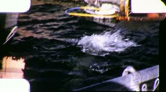 DOLPHINS JUMP Zoo Captive Aquarium Show Performance 1950 Vintage Home Movie 4119 Stock Footage