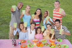 Multi-ethnic friends toasting at picnic table - stock photo