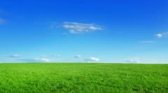 Green field and blue sky Stock Footage