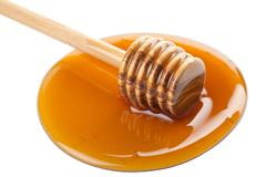 wild honey and wooden dipper isolated - stock photo