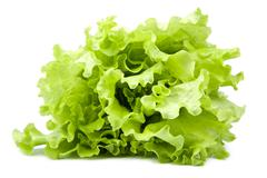 fresh lettuce isolated - stock photo