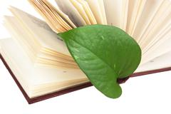 Stock Photo of green leaf bookmark in a book