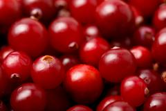 Stock Photo of red cranberries background