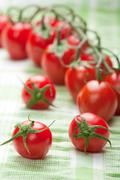 ripe tomatoes over green - stock photo