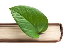 green leaf bookmark in a book - stock photo