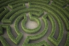 Garden maze Stock Illustration