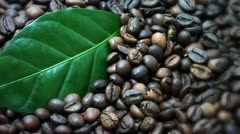 Coffee beans. Coffee tree leaves (Gently rotate). The edges are blurred. Stock Footage