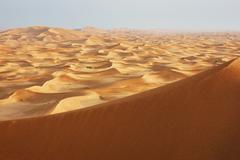 Sand dunes of the arabian desert Stock Photos