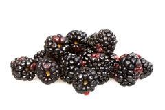 Lots of blackberries Stock Photos