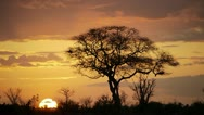 Stock Video Footage of AFRICAN SUNSET Kenya, Africa