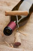 Wine bottle and corkscrew on a canvas Stock Photos
