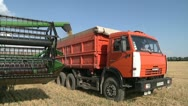 Stock Video Footage of loading grain harvester