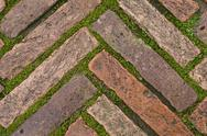 Stock Photo of green grass between cobblestones