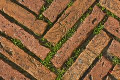 Stock Photo of green grass between cobblestones