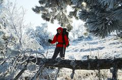 men in the beautiful winter forest - stock photo