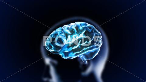Stock Illustration of blue crystal brain with head
