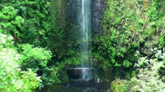 Waterfall passage in rainforest 20110429 151110 Stock Footage