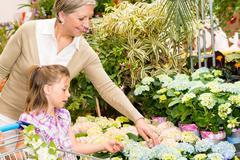 Garden center girl with grandmother buy flowers Stock Photos