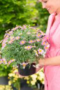woman hold potted daisy flower garden centre - stock photo