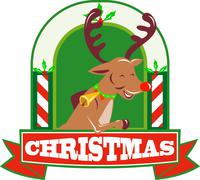 Reindeer deer stag buck christmas. Stock Illustration