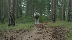 Man walking through the forest Stock Footage