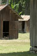 Old wood sheds buildings tin roofs dudley farm historic state park  florida Stock Photos