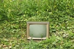 old tv set among green plants - stock photo