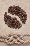 coffee beans and rope knot on sack - stock photo