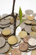 Financial growth.conceptual image. Stock Photos