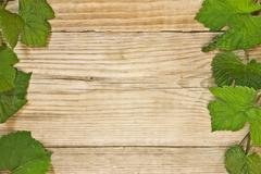 Grapevine on a wooden background Stock Photos