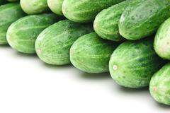Bunch of cucumbers Stock Photos